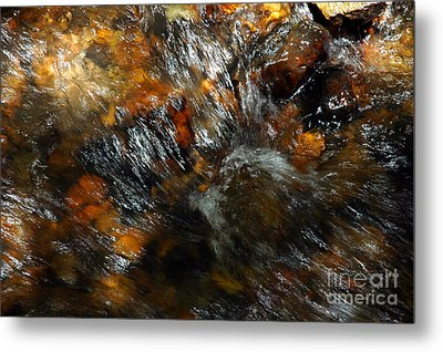 River Color Metal Print by Allen Carroll