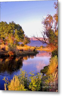 River Colors Metal Print