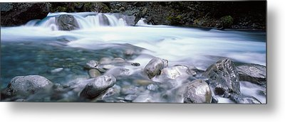 River, Hollyford River, Fiordland Metal Print by Panoramic Images
