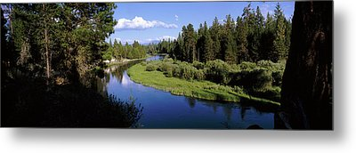 River In A Forest, Don Mcgregor Metal Print by Panoramic Images