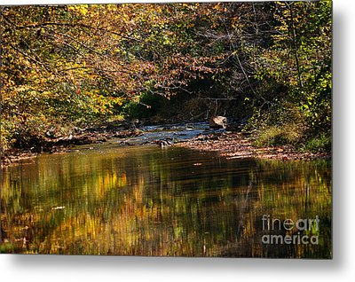 Metal Print featuring the photograph River In Autumn by Lisa L Silva