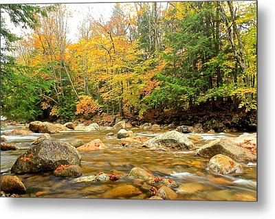 Metal Print featuring the photograph River In Fall Colors by Amazing Jules