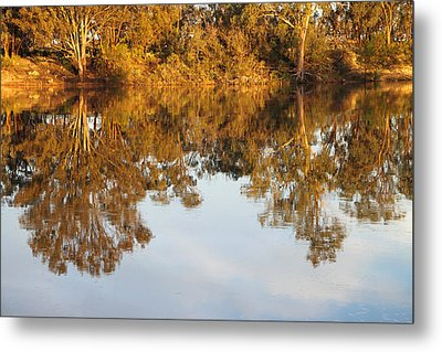River Murray Reflections Early Evening Metal Print by Carole-Anne Fooks