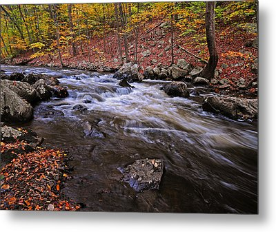 River Of Color Metal Print by Dave Mills