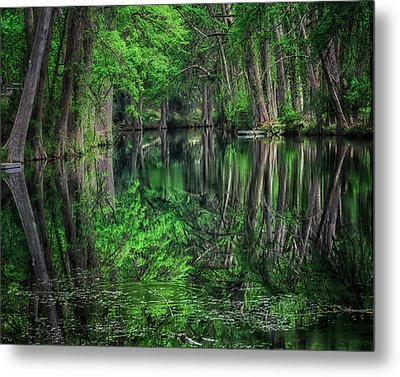 River Of Reflections Metal Print by Toma Caul