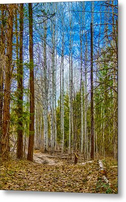 River Run Trail At Arrowleaf Metal Print by Omaste Witkowski