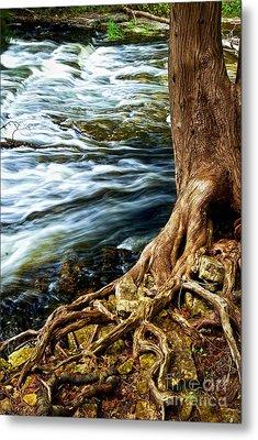 River Through Woods Metal Print