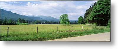 Road Along A Grass Field, Cades Cove Metal Print by Panoramic Images