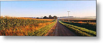 Road Along Rural Cornfield, Illinois Metal Print by Panoramic Images
