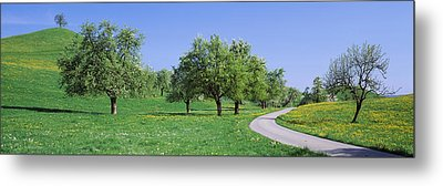 Road Cantone Zug Switzerland Metal Print by Panoramic Images