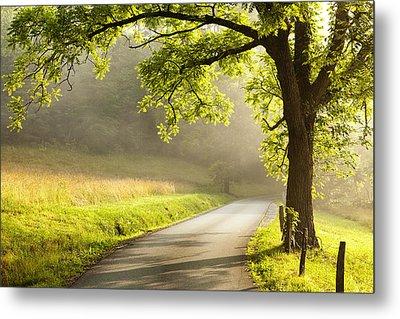Road In The Woods Metal Print by Andrew Soundarajan