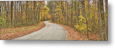 Road Passing Through A Forest, Brown Metal Print by Panoramic Images