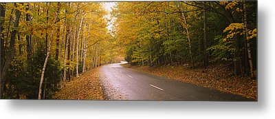 Road Passing Through A Forest, Park Metal Print