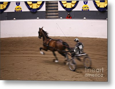 Metal Print featuring the photograph Road Pony At Speed by Carol Lynn Coronios