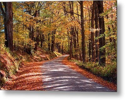 Metal Print featuring the photograph Road Through Woods by Larry Landolfi