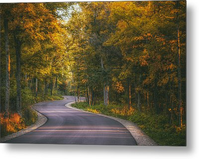 Road To Cave Point Metal Print by Scott Norris