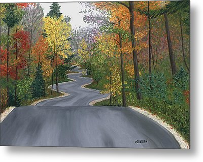 Road To Northport Metal Print