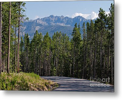 Metal Print featuring the photograph Road To The Mountains by Charles Kozierok