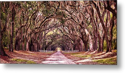 Road To The South Metal Print by Renee Sullivan