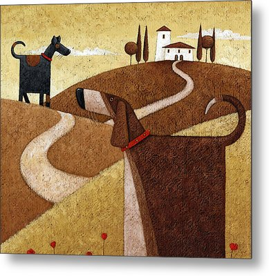 Road To Tuscany Metal Print by Peter Adderley