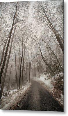 Road To Winter Metal Print by Karol Livote