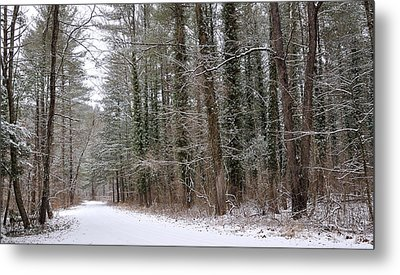 Road To Winter Metal Print by Todd Hostetter