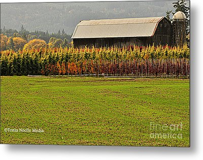 Roadside Barn Metal Print