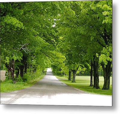 Metal Print featuring the photograph Roadway by Susan Crossman Buscho