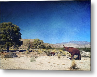 Roaming Metal Print by Laurie Search