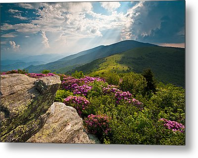 Roan Mountain From Appalachian Trail Near Jane's Bald Metal Print