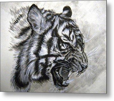 Roaring Tiger Metal Print by Lori Ippolito