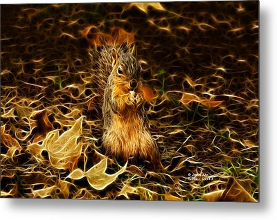 Robbie The Squirrel -1554 F Metal Print by James Ahn