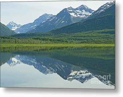Metal Print featuring the photograph Robe Lake by Nick  Boren