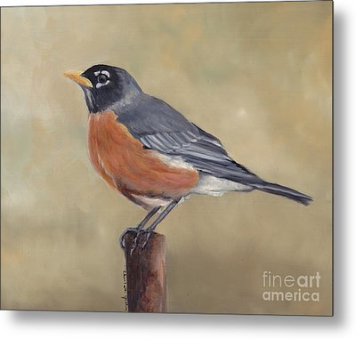 Robin Metal Print by Charlotte Yealey