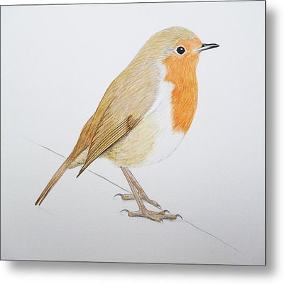 Robin Metal Print by Ele Grafton