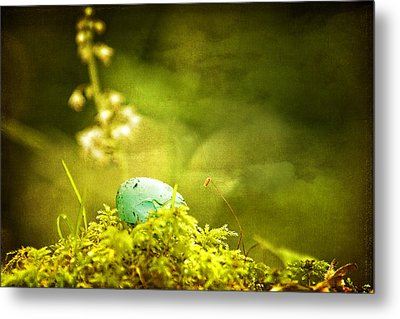 Metal Print featuring the photograph Robin's Egg On Moss by Peggy Collins