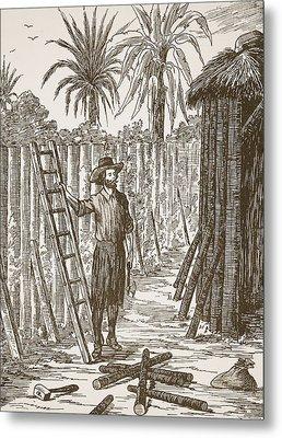 Robinson Crusoe Building His Bower Metal Print by English School
