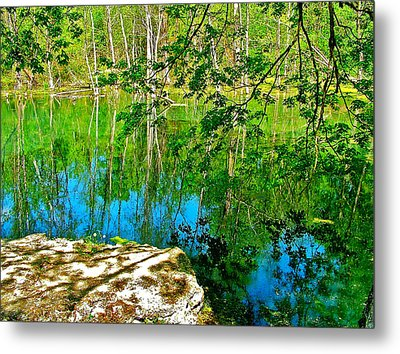 Rock And Spring On Rock Spring Trail Near Natchez Trace Parkway-alabama  Metal Print