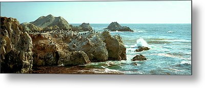 Rock Formations At A Coast, Bird Rock Metal Print