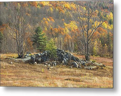Rock Pile In Maine Blueberry Field Metal Print by Keith Webber Jr