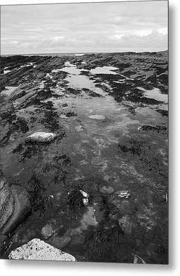 Rock Pool Metal Print by Steve Watson