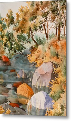 Rock Reflections Metal Print by Teresa Ascone