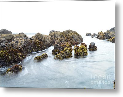 Rock The Seascape Metal Print by Sheldon Blackwell