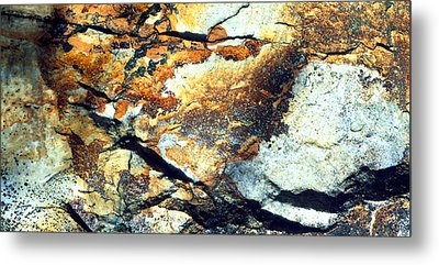Rock Wasatch National Forest Ut Usa Metal Print by Panoramic Images