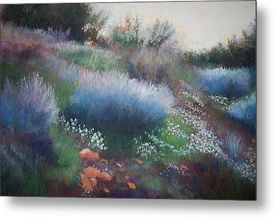 Rocks And Blooms Metal Print by Anita Stoll