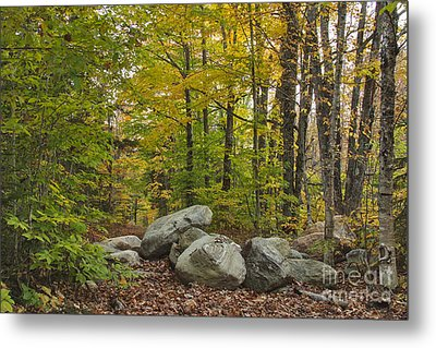 Rocky Forest Path Metal Print by Charles Kozierok