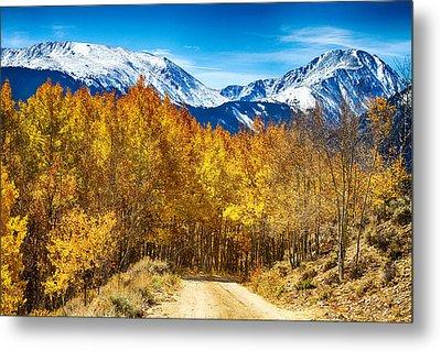 Rocky Mountain Autumn Cruisin Metal Print