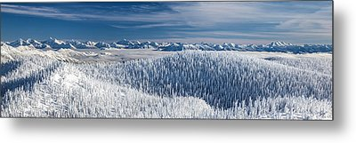 Metal Print featuring the photograph Rocky Mountain Winter by Aaron Aldrich