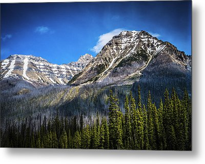 Metal Print featuring the photograph Rocky Mountains Kootenay National Park by Rob Tullis