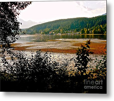 Rocky Point Port Moody Metal Print by Sher Nasser